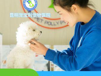 宠宝利宠物医院(华龙人家分院)