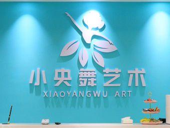 小央舞国际艺术中心(中南凤凰店)