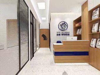贝希宠物医院(大沥分院)