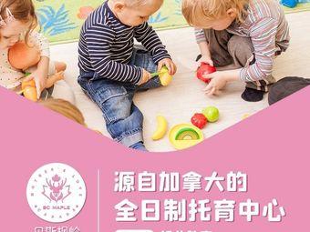 贝斯枫岭国际婴幼园