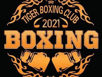 泰格拳击俱乐部