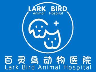 百灵鸟宠物医院