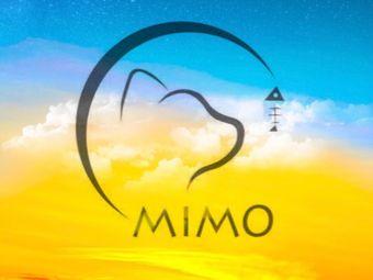 MIMO密室逃脱