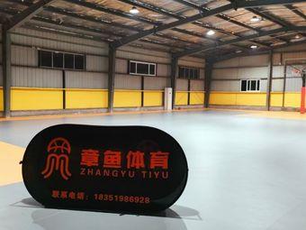 章鱼体育篮球培训