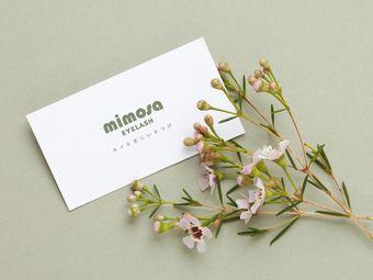 mimosa美睫(五一广场店)