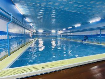 铁西游泳馆