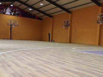 泳树篮球馆