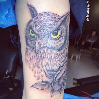 写实猫头鹰纹身图