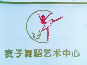 麦子舞蹈艺术中心