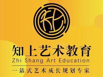 知上艺术教育