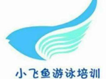 小飞鱼游泳池(荣盛华府店)