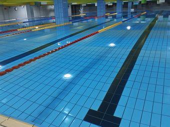 金海豚游泳馆