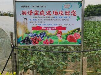 丽泽家庭农场草莓蓝莓樱桃
