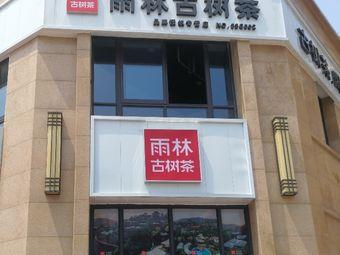 雨林古树茶(虹桥店)