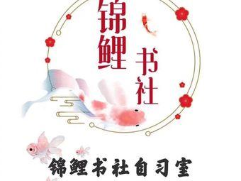 锦鲤书社自习室(河大未来石店)