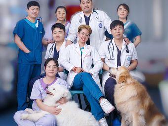 爱心宠物医院