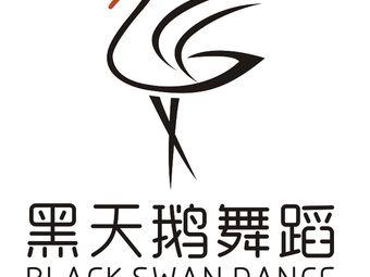 黑天鹅舞蹈艺术培训中心