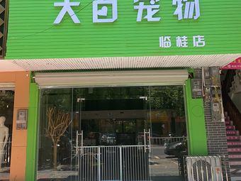 大白宠物(临桂店)