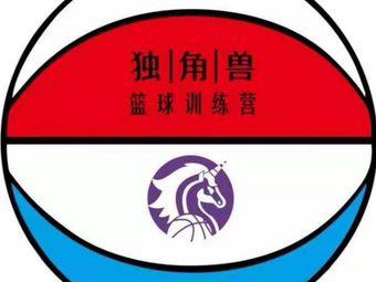 吉励运动馆独角兽篮球训练营