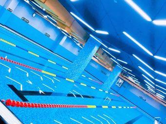 蓝鸥游泳馆