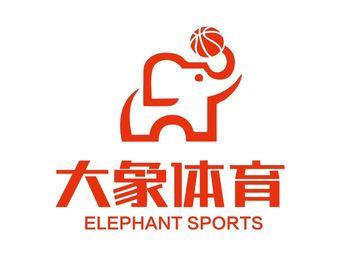 大象篮球俱乐部(中港城店)