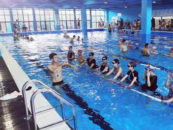蓝鲨游泳馆