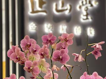 正山堂·黄品院子