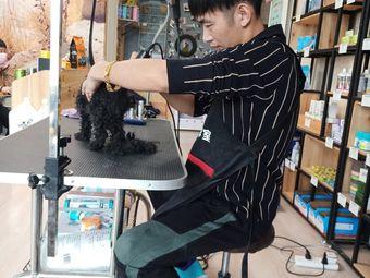 乔小宠宠物美容工作店