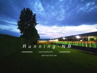 Running·NB宠物酒店