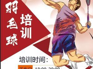 星悦羽毛球俱乐部