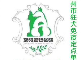 京阳宠物医院·心脏彩超·特色猫科
