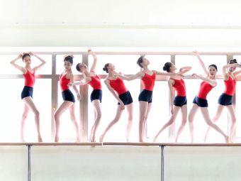 舞艺安杨 舞蹈芭蕾形体(松北店)