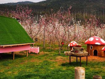 欢乐鲜果采摘园