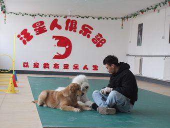 汪星人宠物训练学校