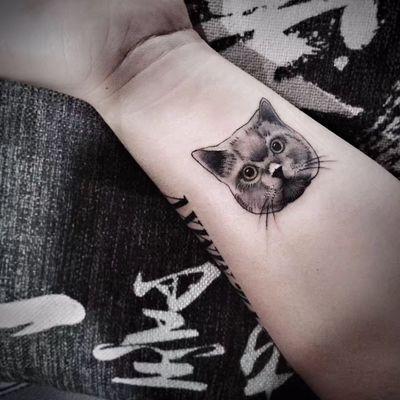 猫纹身款式图