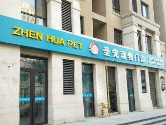 ZHEN HUA·圣宠动物门诊