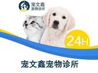 宠文鑫宠物医院(江头24h分院)