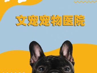 文宠宠物医疗中心·24小时(中央美郡店)