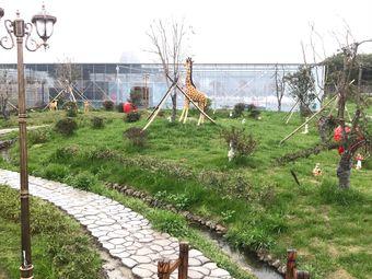 宁波开心家庭农场