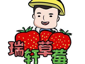 瑞轩草莓种植家庭农场