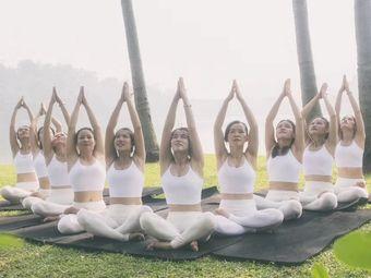 晶钰·若多瑜伽