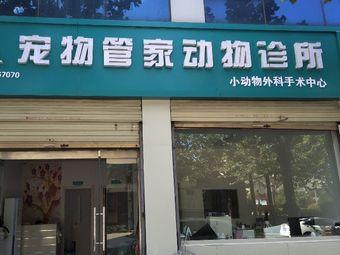 单县宠物管家动物诊所(宠物管家喵咪中心)