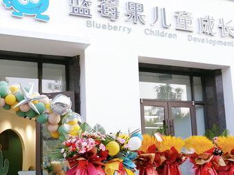 蓝莓果儿童成长中心