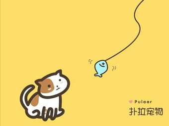 扑拉宠物猫舍(汇锦城店)