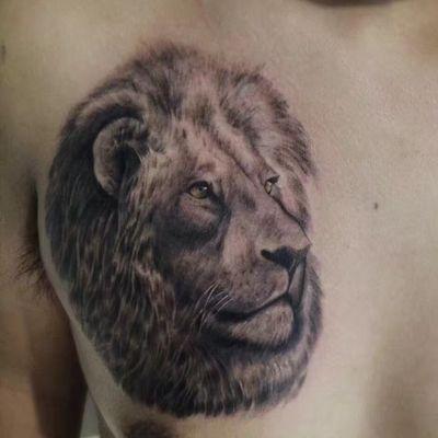 素描狮子纹身款式图