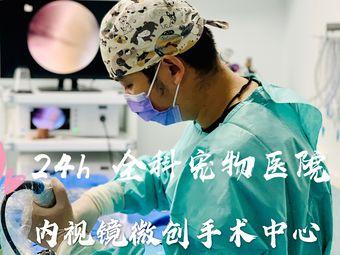 安安寵醫·24h點點寵物醫院(內視鏡微創手術中心)