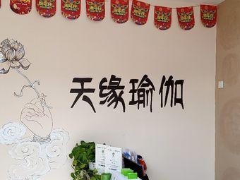 天缘瑜伽(高区欧乐坊西门)