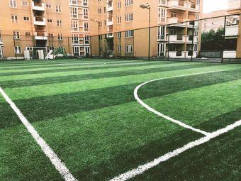 锋将足球场