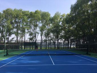 腾飞网球俱乐部