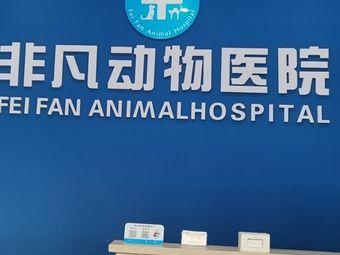 非凡动物医院